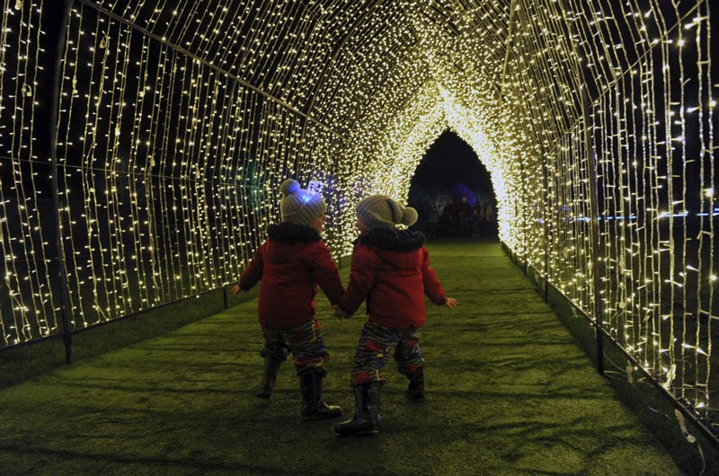 visitor-experience-light-tunnel