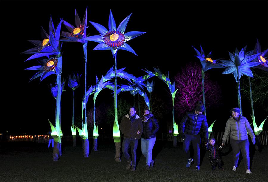 Giant Bluebell Sculpture at Malvern Winter Glow